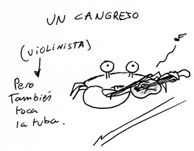 cangrejo violinista